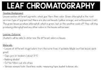Fall Science Activity: Leaf Chromatography