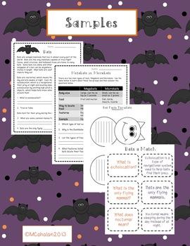Fall Science Mini Unit: Batty Bats