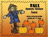 Fall Synonym/ Antonym Vocabulary Activities