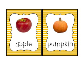 Fall Theme Vocabulary Cards