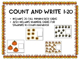 Fall Themed Count and Write 1-20 Task Cards