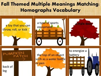 Fall Themed Multiple Meanings Vocabulary: Homographs
