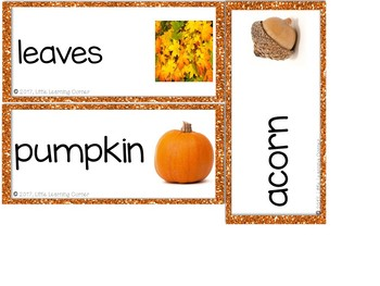 Fall Vocabulary Word Cards - Polka Dots