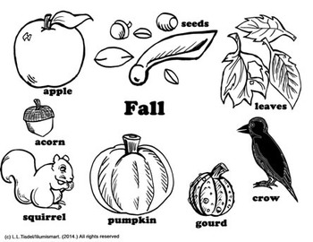 Fall Visual Reference Sheets/Coloring Sheets for Centers! (6)