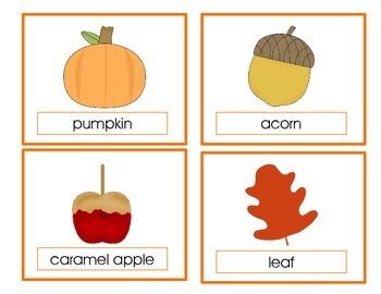 Fall Vocabulary Cards