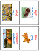 Fall Vocabulary Cards  in English and Spanish