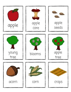 Fall Vocabulary and Mini Unit