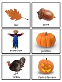 Autumn Vocabulary and Silhouette Match--Montessori Matchin