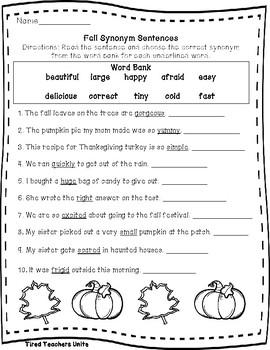 Fall No Prep Literacy Packet - VA SOLS