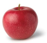 Fall: apples and leaves smart board activity for preschoolers