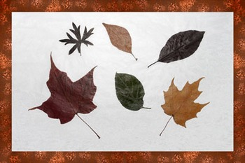 Fall craft with dried leaves
