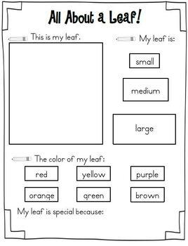 Fall into Literacy & Math