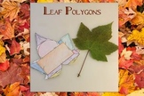 Fall into Math - Polygons in Leaves