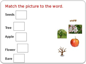 Fall is Apple Time! Vocabulary Leson