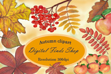 Fall leaves Autumn clipart, watercolor fall clipart, maple leaf apples and rowan