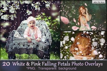 Falling White & Pink Petals Photo Overlays