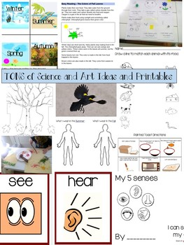 Preschool Unit 2: Falling for Autumn Bundle of Lessons and Activities