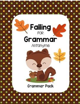 Falling for Grammar - Picture & Word Antonym (Grammar Pack)