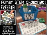 Family STEM Challenge {FREEBIE!}