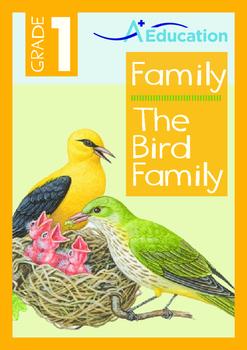 Family - The Bird Family - Grade 1