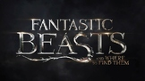Fantastic Beasts & Where To Find Them Trivia