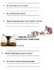 Fantastic Mr. Fox Chapter responses