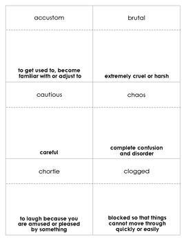 Fantastic Mr. Fox Vocabulary Bingo