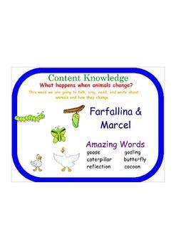 Farfallina and Marcel Reading Street FlipChart