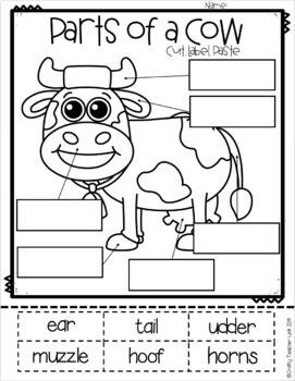Farm Animal / Cow Report Research / Non-Fiction