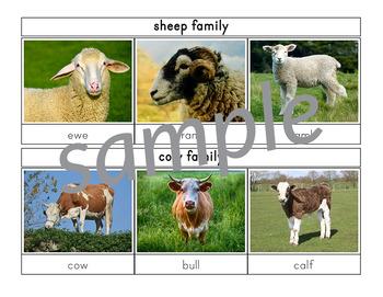 Farm Animal Families 3-Part Cards