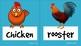 Flashcards: Farm animals