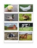 Farm Animal Mom's and Babies WODB
