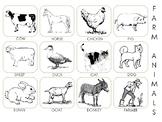 Farm Animal Pictures PECS
