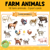 Montessori Inspired Farm Animals 3 Part Cards