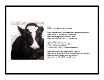 Farm Animals Activity Pack