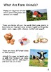 Farm Animals: An Informational Text for Guided Reading