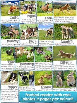 Farm Animals Babies ELA Unit & Reader Bundle!