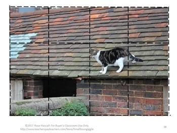 Farm Animals Cut and Paste Puzzles Using Real Photos Preschool Kindergarten