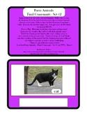Farm Animals - Final Consonants - Rhyming Words - Set #2