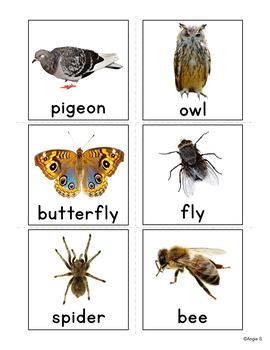 Farm Animals Vocabulary Cards for Autism
