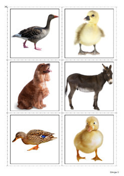 Farm Animals Cards for Autism and Speech Therapy