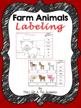 Farm Animals Labeling - First and Second