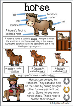 Farm Animals Literacy Posters anchor charts