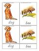 Farm Animals Montessori 3 Part Cards English Only