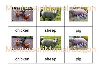 Farm Animals Montessori Three Part Cards