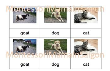 Farm Animals Montessori Three Part Vocabulary Cards