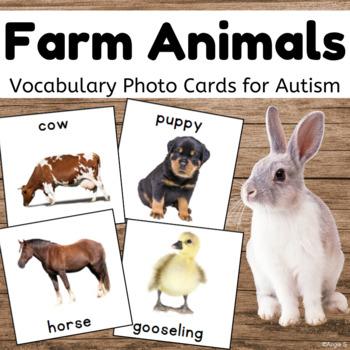 Farm Animals Cards {Dollar Deal}