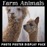 Farm Animals Posters | Real Photos with Labels | Science Display