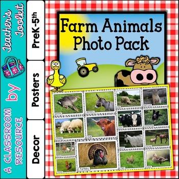 Farm Animals Printable Photo Posters Display Pack {UK Teaching Resource}