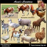 Farm Animals Real Photo Clip Art